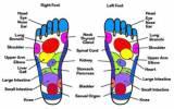 Paris Hilton's Foot Reflexology Chart