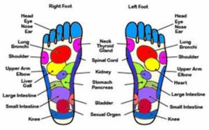 Paris Hilton's Foot Reflexology Chart